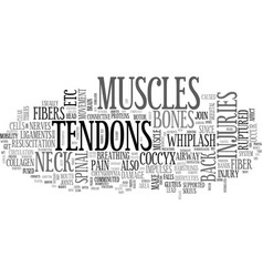 Back pain and tendons text word cloud concept vector