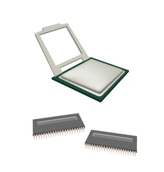 Central Processing Unit Chips and Pins vector image