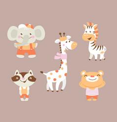 funny cartoon zoo with bear raccoon zebra giraffe vector image