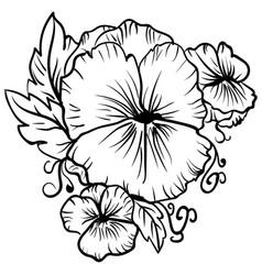 elegant decorative pansy flowers sketch pansies vector image vector image