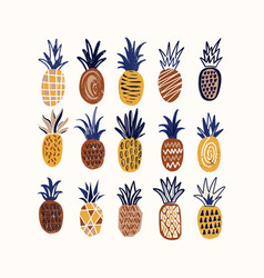 composition with stylized pineapples of various vector image
