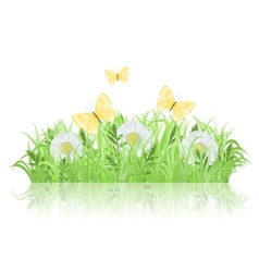 Green meadow vector image