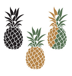 pineapple fruit set vector image