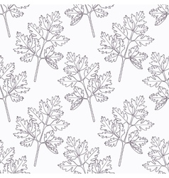 Hand drawn chervil branch outline seamless pattern vector image