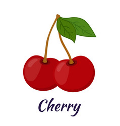 garden fresh cherry sweet berries in flat style vector image vector image