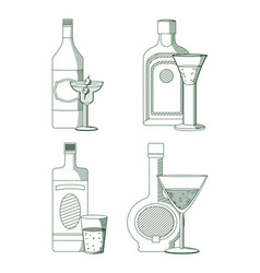 set of alcohol bottles vector image