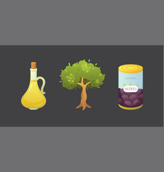 set olives fruit olive oil bottle tree vector image