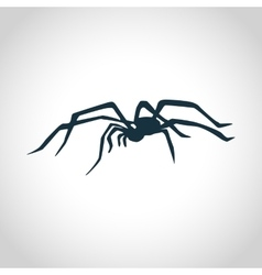 Spider black silhouette vector