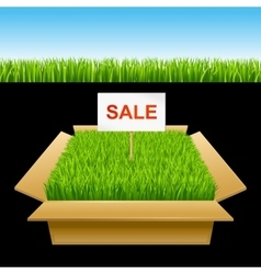 Open box with green grass Sale vector image