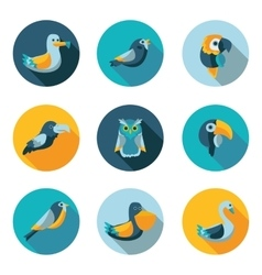 birds flat icons vector image