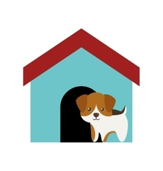 dog canine young standing colored house vector image vector image