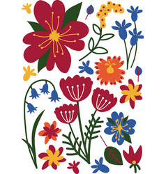 Colorful wild or garden blooming flowers floral vector