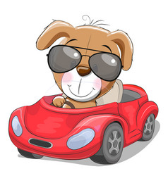 Cute cartoon puppy goes on a red car vector