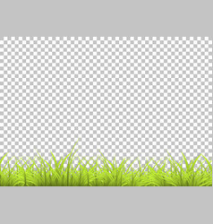 grass with shadow in isolated background summer vector image