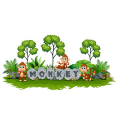 the monkey is playing in garden vector image
