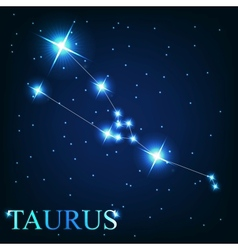 The taurus zodiac sign of the beautiful bright vector