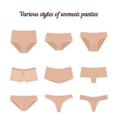 various styles of women panties vector image