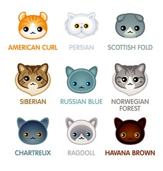 Cute cat icons set II vector image vector image