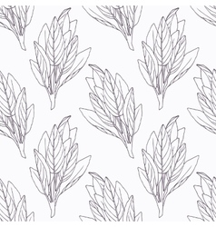 Hand drawn sage branch outline seamless pattern vector image