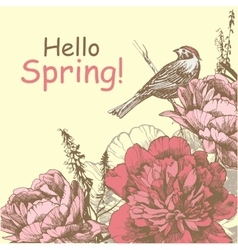 Hello Spring Background with peony and bird Peony vector image vector image