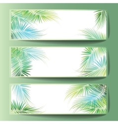 Banners with the palm tree branches vector image