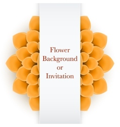 Greeting card or background with light orange vector