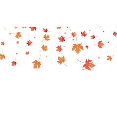 leaves background falling autumn maple vector image