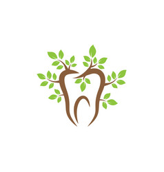 nature dental icon design template isolated vector image