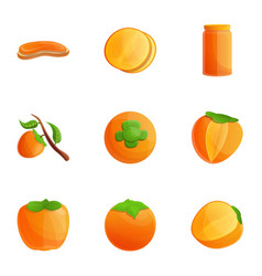 Orange persimmon icon set cartoon style vector