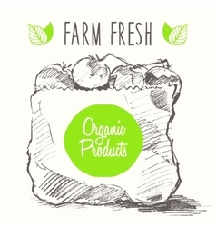 Organic farm food poster healthy sticker drawn vector