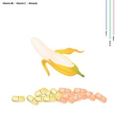 Ripe Banana with Vitamin B6 and Vitamin C vector