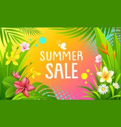 summer sale banner colorful design background vector image
