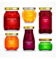 homemade fruit jam jars vector image vector image