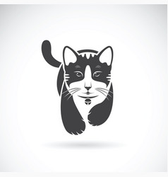 cat on white background pet animal vector image vector image