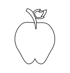 sweet red apple vitamin nature outline vector image