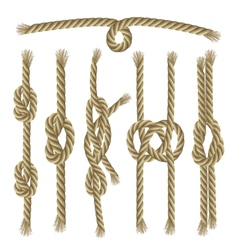 Knots Collection Set vector image vector image