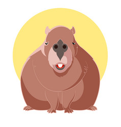 cartoon smiling capybara vector image