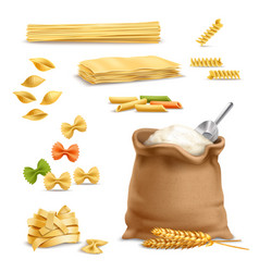 realistic pasta wheat spikelets flour vector image vector image