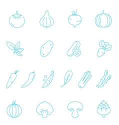 Thin lines icon set - vegetable vector image vector image