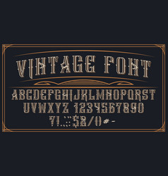 decorative vintage font on dark background vector image