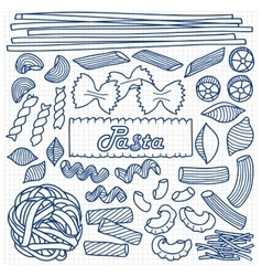 Different types of pasta on squared paper vector image