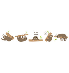 sloth set line icon mother with bacute lazy vector image
