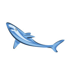 swimming shark animal sea fish vector image