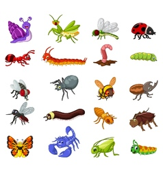 collection of insects cartoon for you design vector image vector image