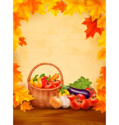 Autumn background with fresh vegetables in basket vector image vector image
