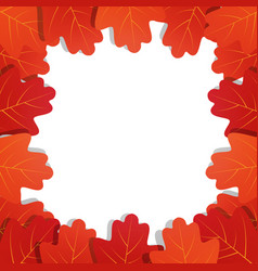 autumn leaves background frame of oak vector image
