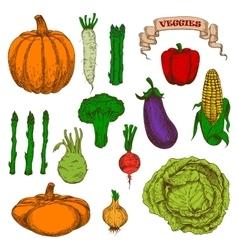 Autumnal harvest vegetables vintage sketch icons vector