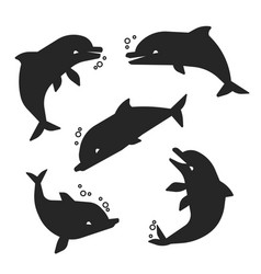 Black dolphins silhouettes isolated on white vector