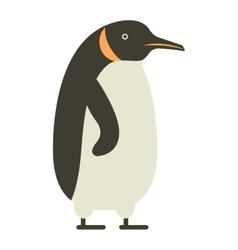 Emperor penguin cute anima vector image