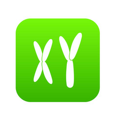 human chromosomes icon digital green vector image